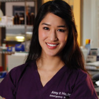 Amy Faith Ho, MD